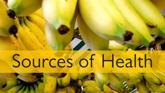 Sources of Health