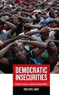 Democratic Insecurities - Book Cover