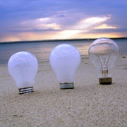 bulbs in sand at beach