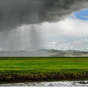 Heavy rains in Mongolia