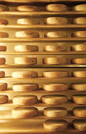 racks of artisan cheese